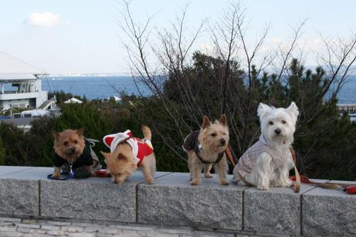 八景島へ遊びにいきました~
