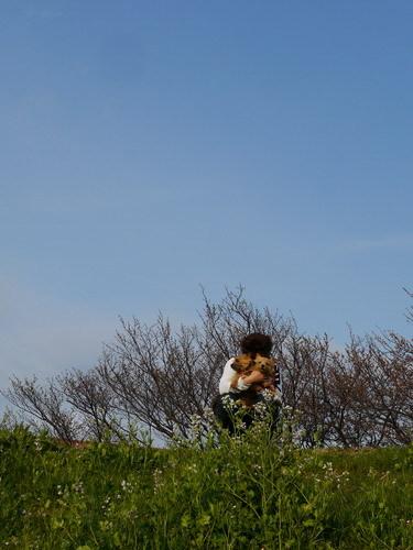 お花見は五分咲き.jpg