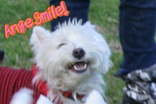 エンジェルの微笑み